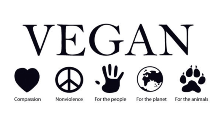 Three Steps to Going Vegan -NO EXCUSES
